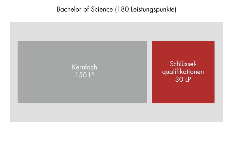 Programme structure: Bachelor of Science, key qualifications