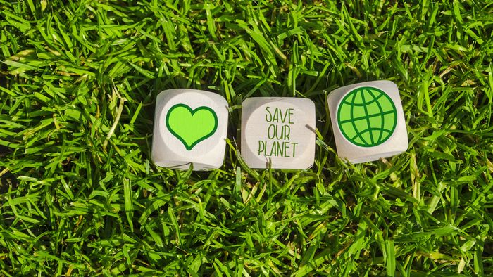 """Auf einer grünen Wiese liegen drei Würfel. Es sind ein Herz, eine Weltkugel und der Schriftzug """"Save our Planet"""" darauf abgebildet."""