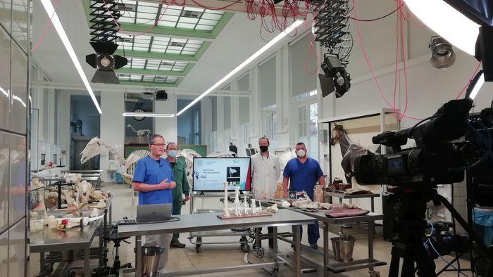 Das Bild zeigt Tierarzt Prof. Christoph Mülling bei den Aufnahmen für das Kooperationsprojekt der Uni Leipzig und MDR Wissen zum Thema Homeschooling, Pferdeanatomie ist sein Thema.