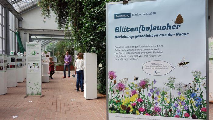 "Die Ausstellung ""Blüten(be)sucher"" beleuchtet Beziehungsgeschichten aus der Natur."