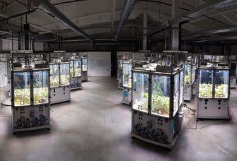 Das Forscherteam nutzte das iDiv Ecotron, in dessen künstlichen Ökosystemen identische klimatische Situationen simuliert und per Kamera beobachtet werden können. Foto: iDiv