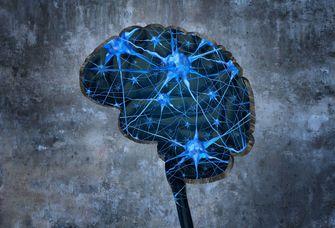 Bei der Parkinsonkrankheit verkümmern Nervenzellen in einem Teil des Gehirns.